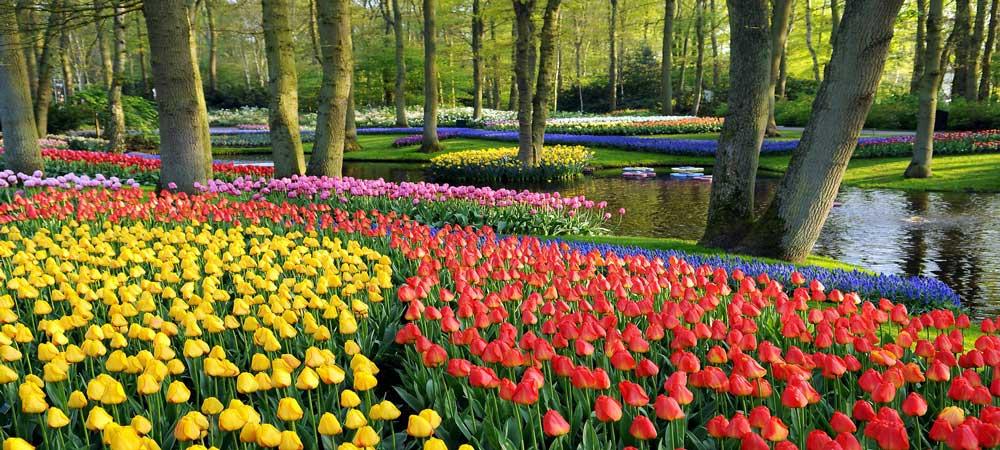 Parques y Jardines de Ámsterdam